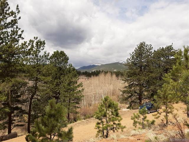 226 & 240 Burton Street, Bailey, CO 80421 (MLS #1992342) :: 8z Real Estate