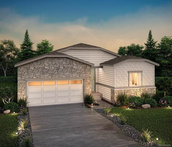 2110 Villageview Lane, Castle Rock, CO 80104 (#1993951) :: The Peak Properties Group