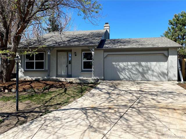 8427 Blue Grama Court, Parker, CO 80134 (#1994764) :: The Heyl Group at Keller Williams
