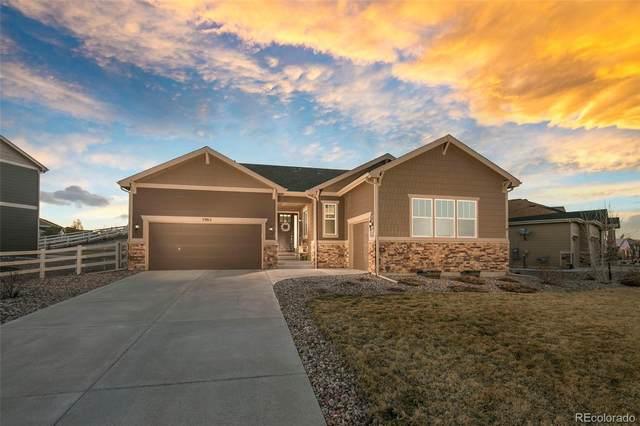 5965 Clover Ridge Circle, Castle Rock, CO 80104 (#1996375) :: Finch & Gable Real Estate Co.