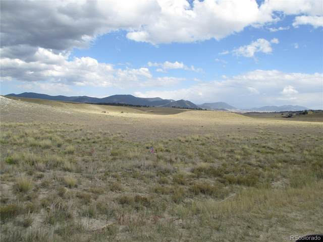 1249 Navajo Trail, Hartsel, CO 80449 (#1996535) :: Own-Sweethome Team