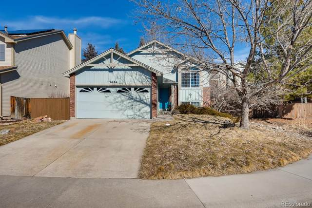 9484 Palisade Court, Highlands Ranch, CO 80130 (#1997025) :: The Dixon Group