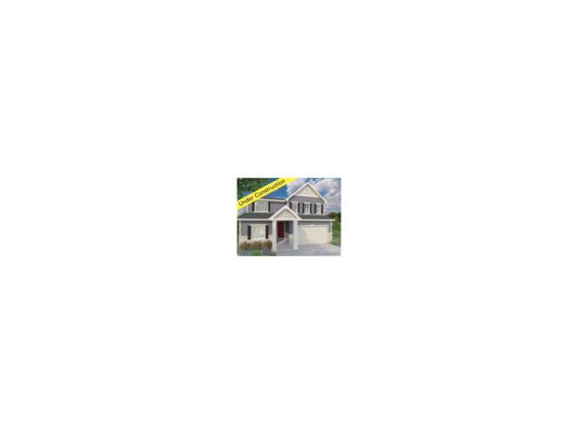 302 Poppy View Lane, Erie, CO 80516 (MLS #1998154) :: 8z Real Estate