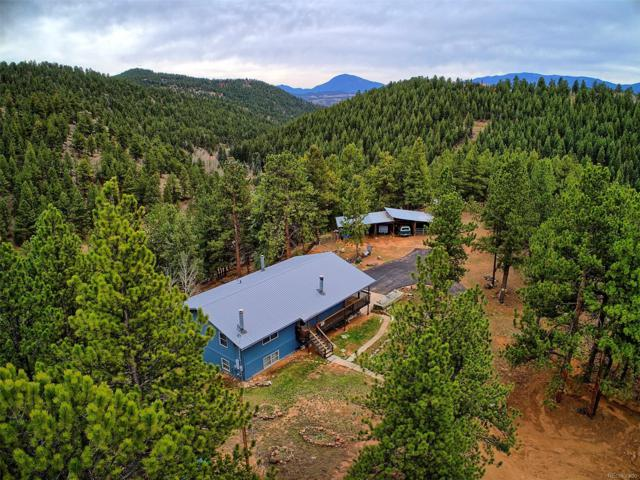 20 Overlook Lane, Bailey, CO 80421 (#1998438) :: The Pete Cook Home Group