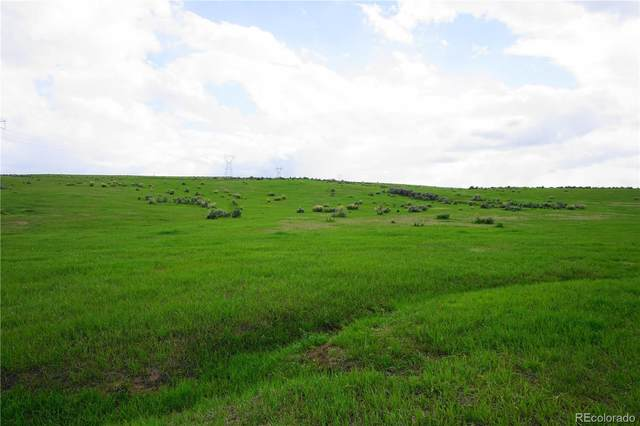 1560 County Road 15, Meeker, CO 81641 (#1999209) :: The DeGrood Team