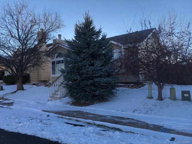 17 Quicksilver Avenue, Castle Rock, CO 80104 (#2003268) :: House Hunters Colorado