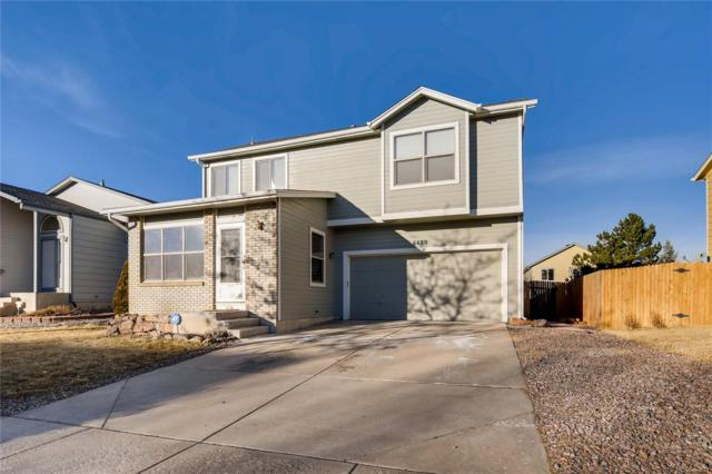 6680 Bear Tooth Drive, Colorado Springs, CO 80923 (#2004778) :: The City and Mountains Group