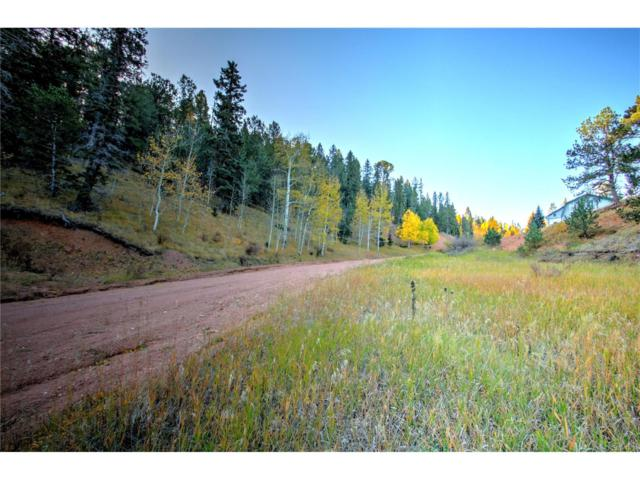 493 Willow Road, Divide, CO 80814 (MLS #2005258) :: 8z Real Estate