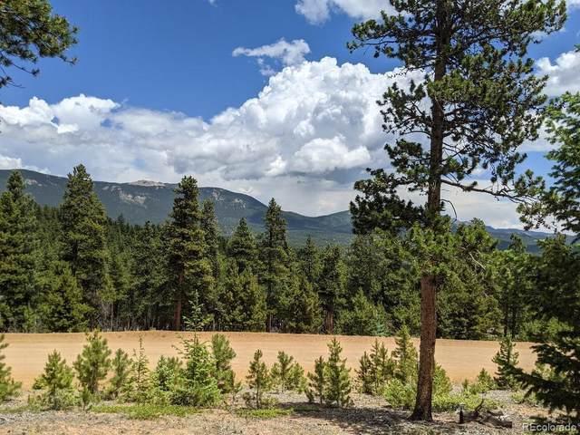 1186 Royal Ridge Drive, Bailey, CO 80421 (MLS #2017548) :: Bliss Realty Group