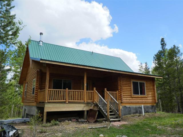 1119 Venture Road, Fairplay, CO 80440 (MLS #2022192) :: 8z Real Estate