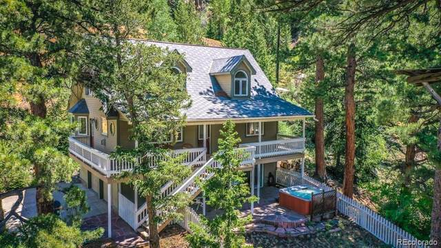 1110 Biddle Street, Georgetown, CO 80444 (#2022246) :: Finch & Gable Real Estate Co.