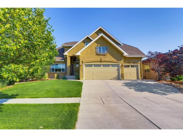 5744 Brave Eagle Drive, Colorado Springs, CO 80924 (MLS #2022798) :: 8z Real Estate