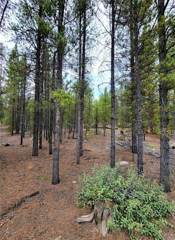 284 Birch Drive, Twin Lakes, CO 81251 (MLS #2023791) :: Bliss Realty Group