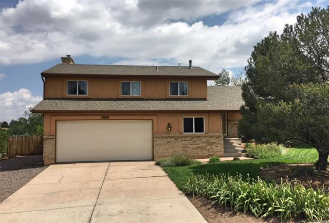 5154 Pony Soldier Drive, Colorado Springs, CO 80917 (#2024381) :: The City and Mountains Group