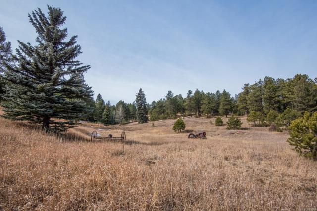 7325 Red Tail Way, Evergreen, CO 80439 (#2025832) :: The Peak Properties Group