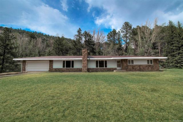 227 Dumont Lane, Dumont, CO 80436 (MLS #2027652) :: 8z Real Estate