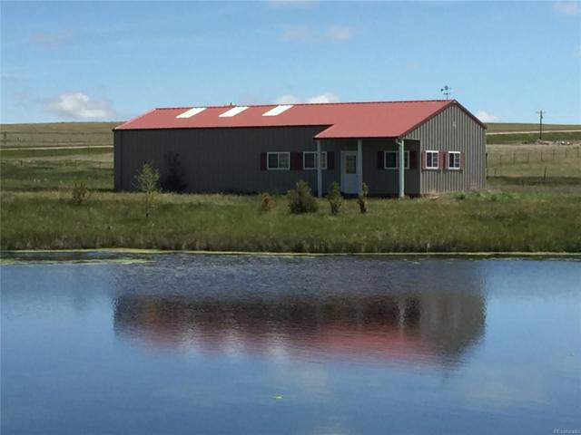 20970 Cheryl Grove, Peyton, CO 80831 (MLS #2027998) :: 8z Real Estate