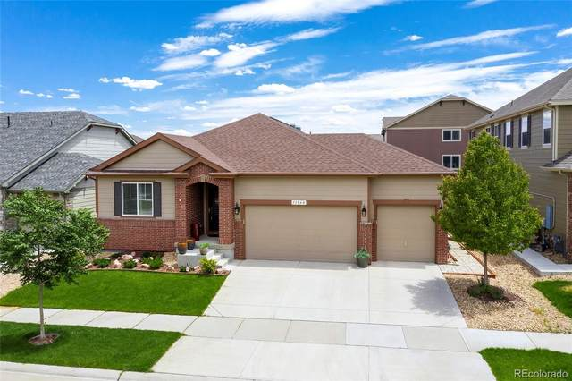 13060 Norway Maple Street, Parker, CO 80134 (#2029027) :: Peak Properties Group
