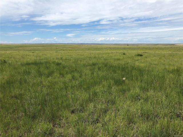 001 County Road 129, Deer Trail, CO 80105 (MLS #2031861) :: 8z Real Estate