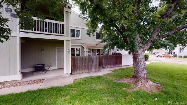 8761 Pierce Way #94, Arvada, CO 80003 (MLS #2036000) :: 8z Real Estate