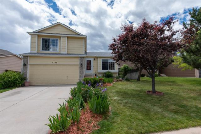 4750 Ramblewood Drive, Colorado Springs, CO 80920 (#2037069) :: Compass Colorado Realty