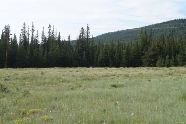 County Road 12, Alma, CO 80420 (#2037100) :: RazrGroup