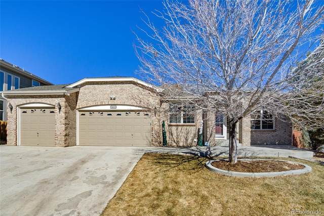 1311 Galactic Place, Castle Rock, CO 80108 (#2048696) :: The Scott Futa Home Team