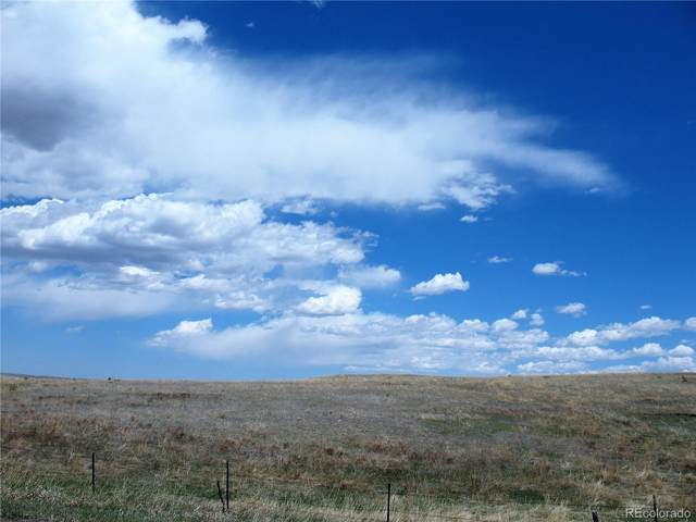 15155 Mcclelland Road, Calhan, CO 80808 (MLS #2049635) :: 8z Real Estate