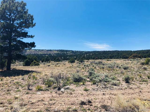 22 W Conejos Trails Drive, Antonito, CO 81120 (#2051972) :: The DeGrood Team