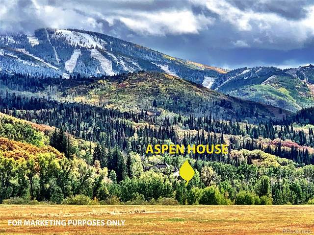 40455 Virtus Way, Steamboat Springs, CO 80487 (#2053951) :: The Dixon Group