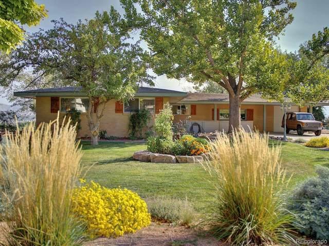 226 Mesa Grande Drive, Grand Junction, CO 81507 (#2055862) :: The DeGrood Team