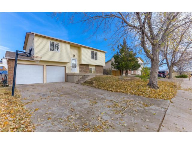 865 Badger Drive, Colorado Springs, CO 80916 (#2060327) :: The Umphress Group