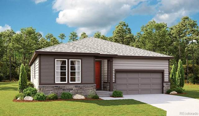 2665 Gray Wolf Place, Castle Rock, CO 80104 (#2062094) :: Venterra Real Estate LLC
