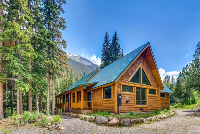 6434 Us 40 Highway, Empire, CO 80438 (#2063435) :: The Healey Group