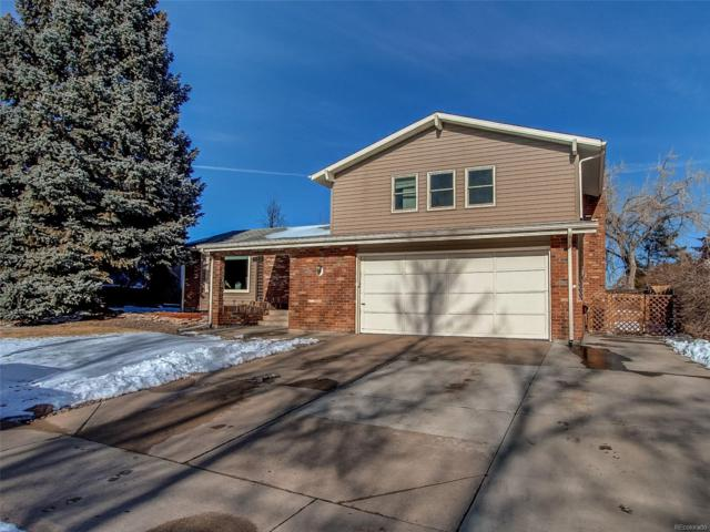 6882 S Webster Way, Littleton, CO 80128 (#2065580) :: The City and Mountains Group