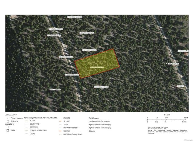 Platte River Drive, Fairplay, CO 80440 (MLS #2073843) :: 8z Real Estate