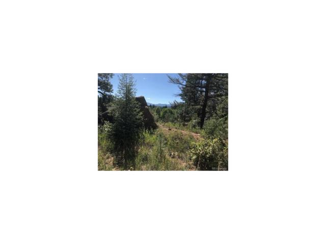 30929 Bear Cub Trail, Conifer, CO 80433 (MLS #2076023) :: 8z Real Estate