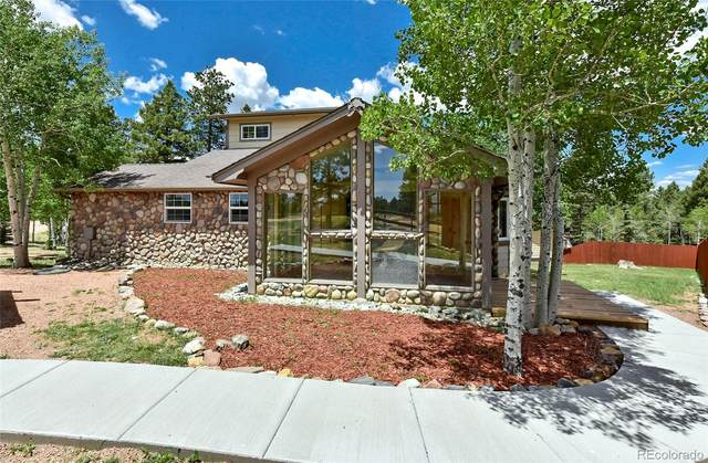 1625 N Mountain Estates Road, Florissant, CO 80816 (#2079915) :: Kimberly Austin Properties