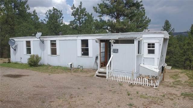 505 Forest Glen Trail, Florissant, CO 80816 (#2080038) :: The Artisan Group at Keller Williams Premier Realty