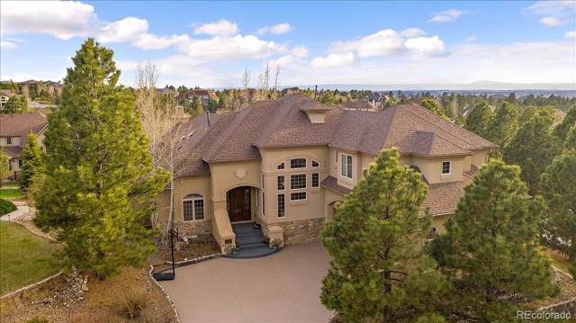 9132 Scenic Pine Drive, Parker, CO 80134 (MLS #2082977) :: Bliss Realty Group