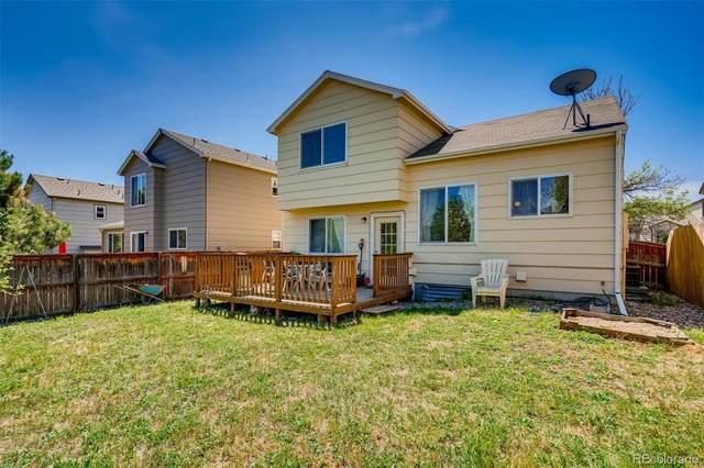 9959 Sydney Lane, Highlands Ranch, CO 80130 (#2084011) :: The Peak Properties Group