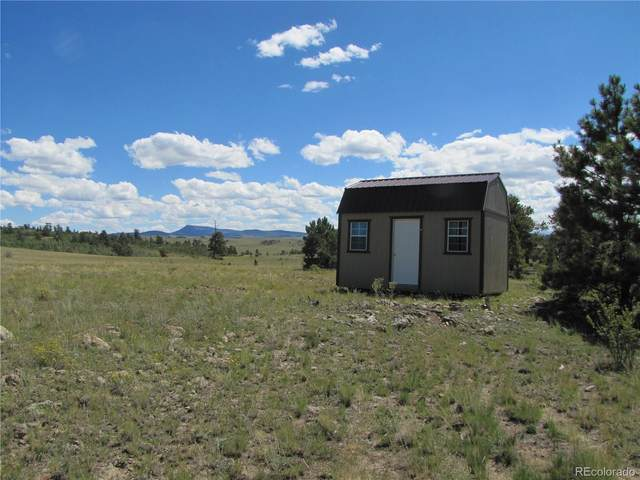 302 Kaw Trail, Hartsel, CO 80449 (#2084638) :: Symbio Denver
