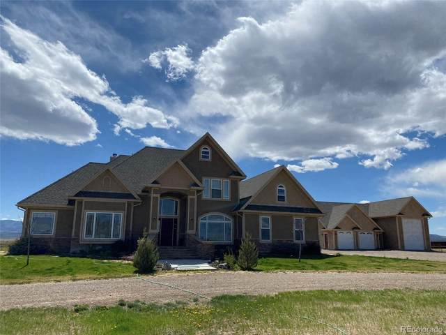 147 Malouff Road, Monte Vista, CO 81144 (#2085303) :: The Colorado Foothills Team | Berkshire Hathaway Elevated Living Real Estate