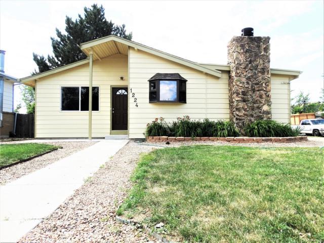 1224 Explorador Calle, Denver, CO 80229 (MLS #2086942) :: 8z Real Estate
