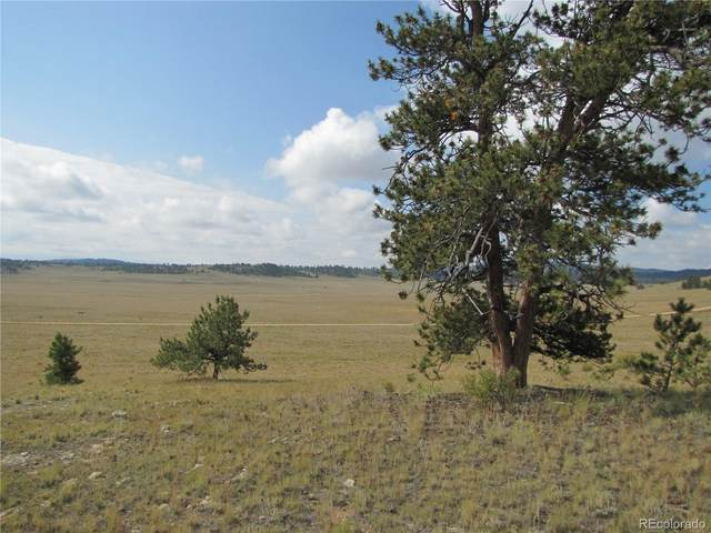 111 Superstition Trail, Hartsel, CO 80449 (MLS #2086949) :: Bliss Realty Group