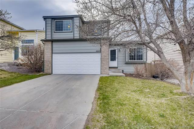 4849 N Foxtail Drive, Castle Rock, CO 80109 (#2087287) :: The DeGrood Team