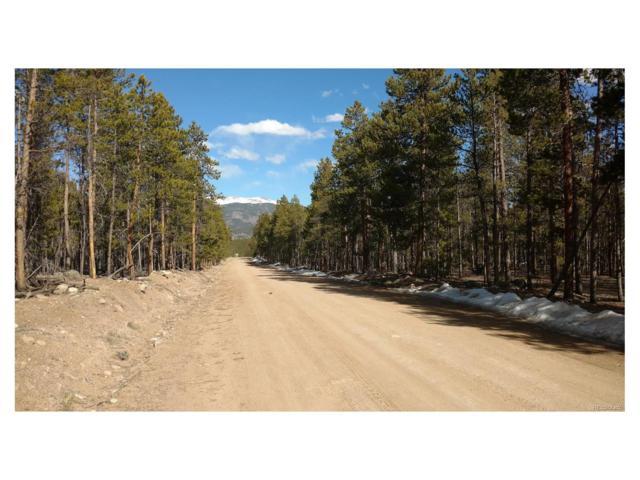 568, 550 Birch Drive, Twin Lakes, CO 80461 (MLS #2088609) :: 8z Real Estate