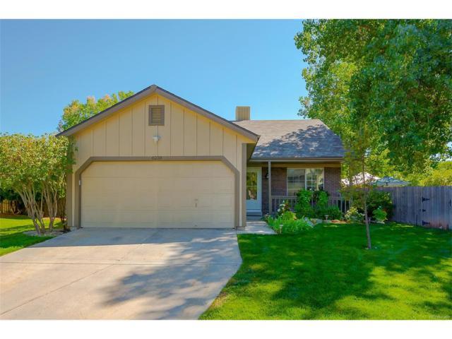 6218 Newton Court, Arvada, CO 80003 (MLS #2091119) :: 8z Real Estate