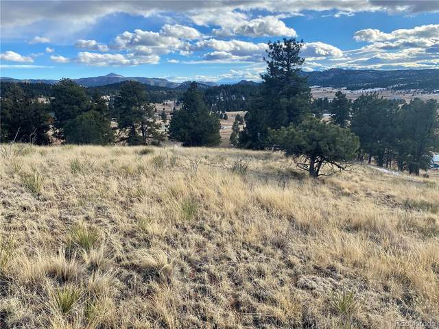 71 Elkhorn Circle, Florissant, CO 80816 (#2091400) :: iHomes Colorado