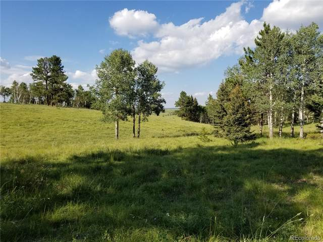 S Highway 24 Highway, Divide, CO 80814 (#2091531) :: HomeSmart Realty Group